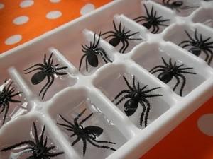 Gelo de aranha