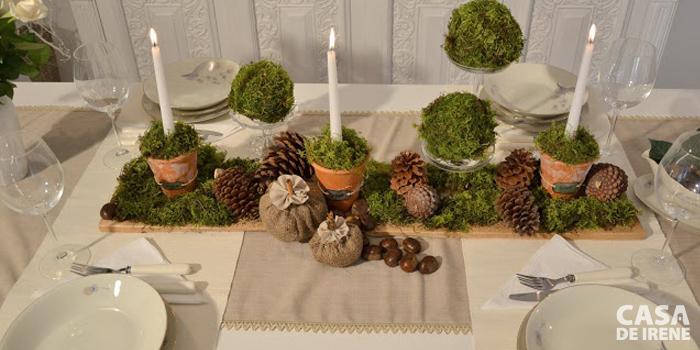 Rústica com musgo e pinhas naturais